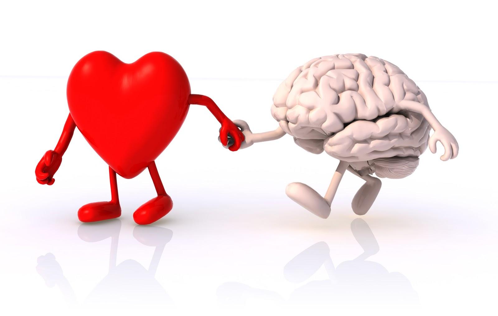 Kadın Erkek İlişkilerinin Yapısı-Kalp ve beyin