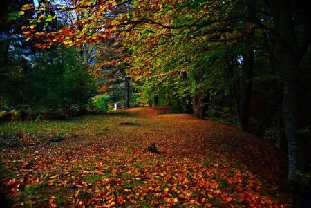Ekim Aylarında Yaşanmış Tarihi Olaylar-Sonbahar