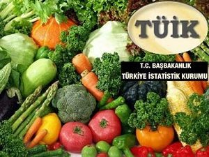 tuik-enflasyon1