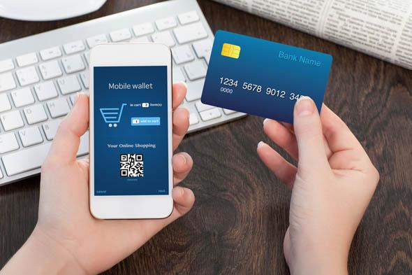 Elektronik Ödeme Sistemi Ödeal Uygulaması