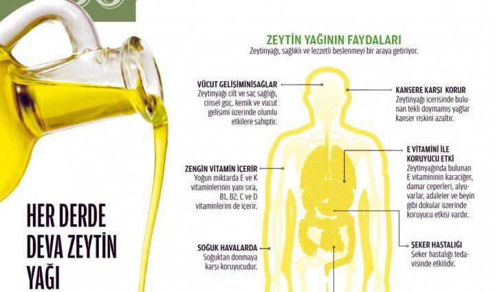 zeytin-yagi-infografik-sekil