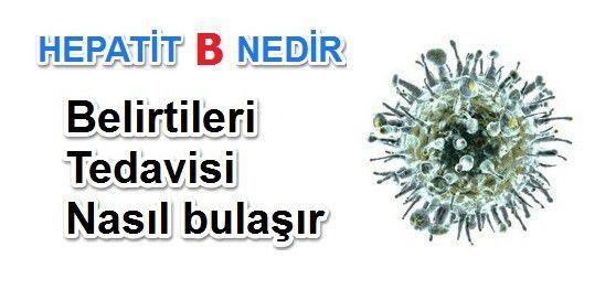 Hepatit B Nedir