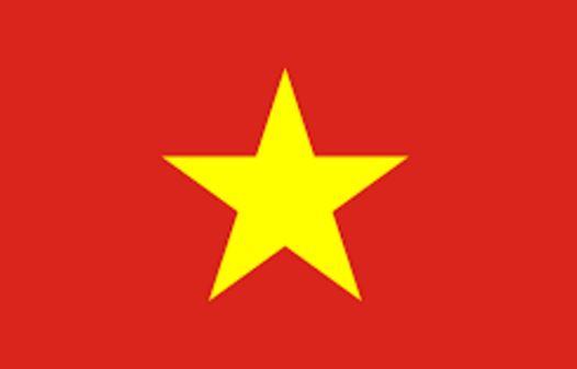 vietnam-bayragi
