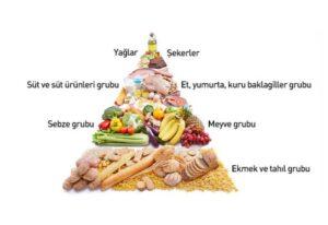 besin-piramidi