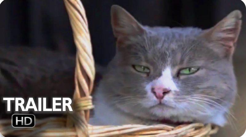 kediler-ceyda-torun
