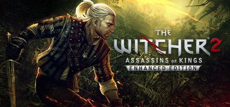 the-witcher2