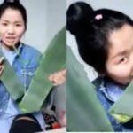 Çinli Vlogger Bayan Zhang Yanlış Aloe Vera Yiyerek Zehirlendi
