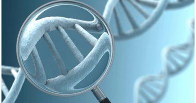 Genetik Miras ve Sağlıklı Yaşam