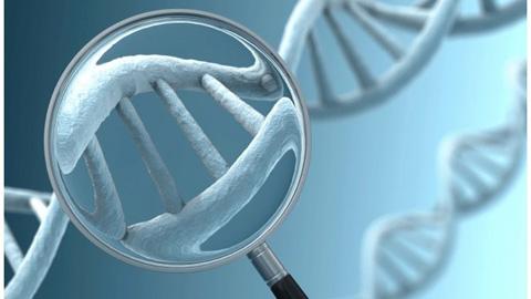 genetik-test-nasil-yapilir