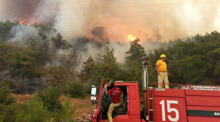 Ormanların Yangınlardan Korunması İçin Öneriler