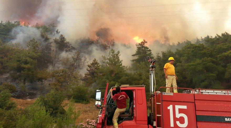 Ormanların Yangınlardan Korunması