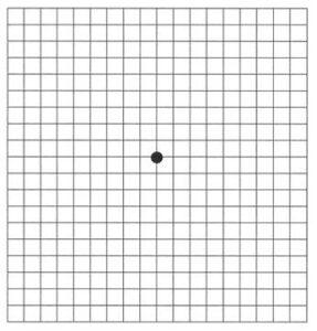 amsler-grid-testi