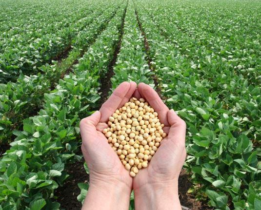 Tarım ve Gıda Girişimciliği