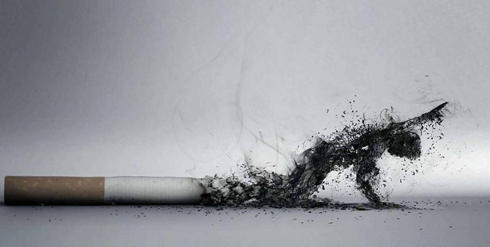 Tütünsüz Dünya Günü