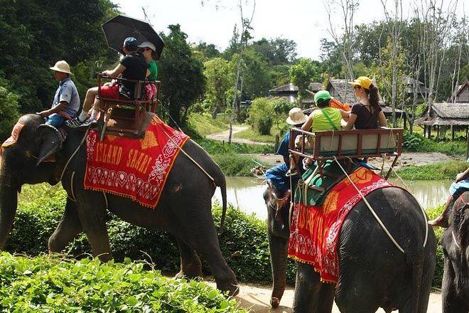 Fil Çiftliği