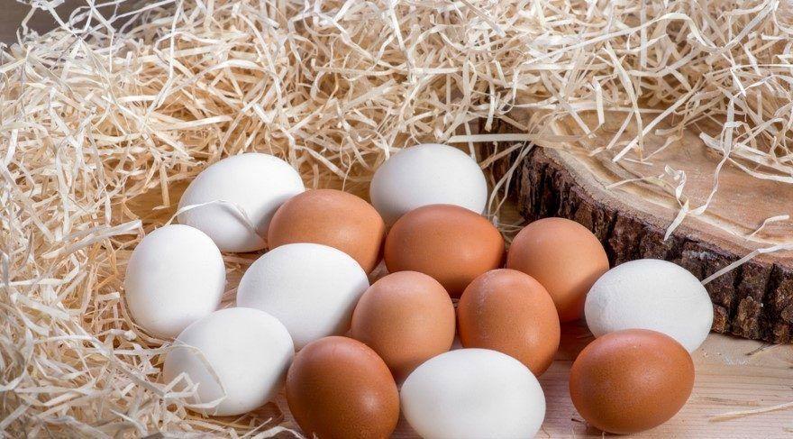 Yumurta Üretimi 2017 Rakamları