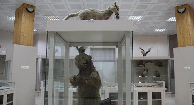 dicle-zooloji-muzesi