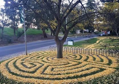 Düşen Yapraklarla Sanat