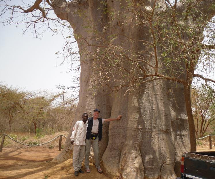 bandia-safari-dakar