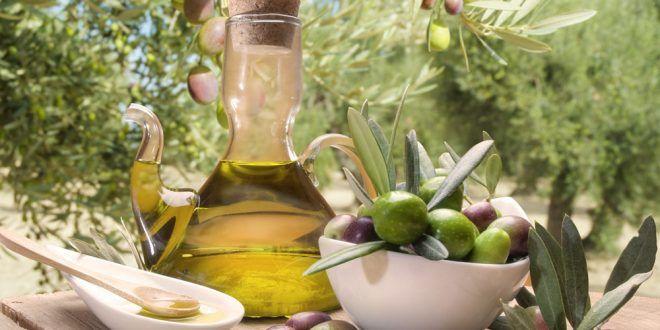 Zeytinyağı Nedir ve Nasıl Saklanır? Zeytinyağı Hakkında