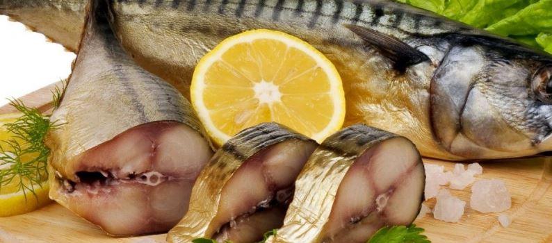 Balıkların Hızla Tükenmesi