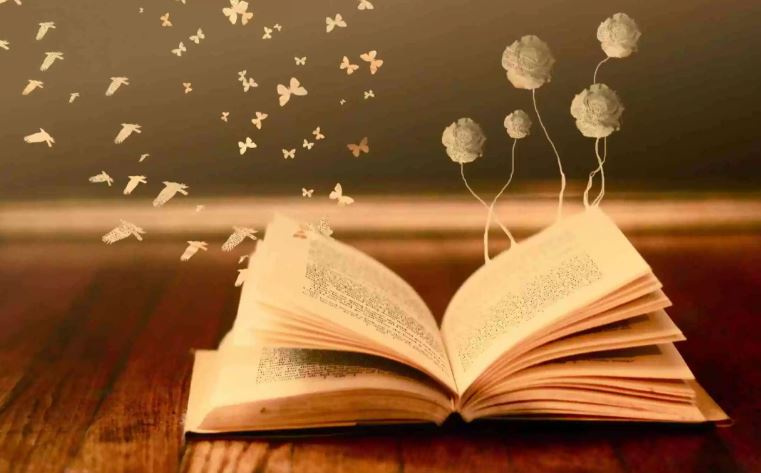 Kitap Okuma Süreleri Türkiye