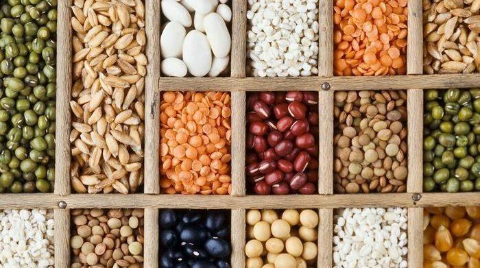 İnsanlar Hangi Tohuma Yatırım Yapıyor? Kooperatifçilik