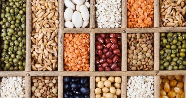 Şubat 2021 Tarım Ürünleri Üretici Fiyat Endeksi Açıklandı
