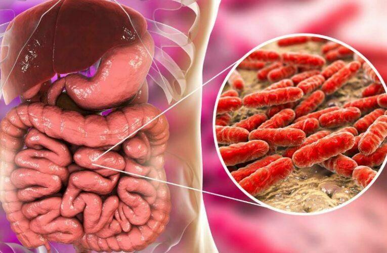 Bağırsak Florası Nedir? Güçlü Mikrobiyom Oluşturmak