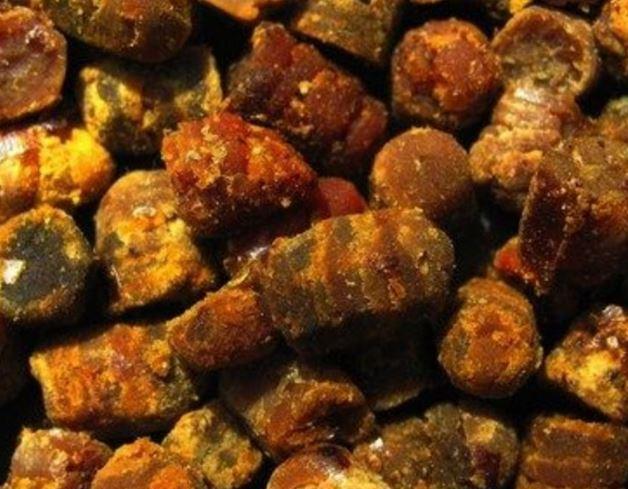 Arıların Varlığının Önemi-Arı Ekmeği
