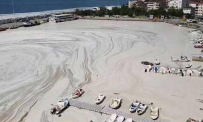 Marmara Denizi Koruma Eylem Planı
