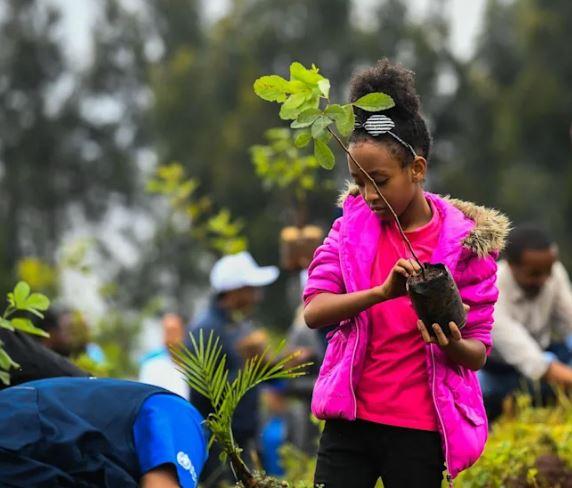 20 Yıl Boyunca Her Yıl 8 Milyar Ağaç Dikmenin